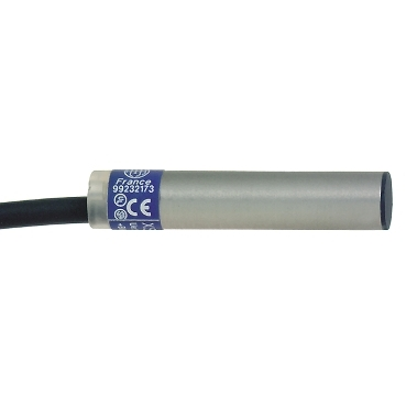 12-24Vdc Cable 2M Schneider Electric XS612B3DAL2 Inductive Sensor Xs6 M12 Brass Sn4Mm L35Mm